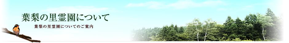 葉梨の里霊園イメージ